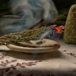 The magical properties of wormwood (Artemisia absinthium)