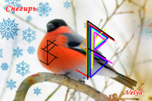 "Becoming A ""Bullfinch"" Author: Velya"