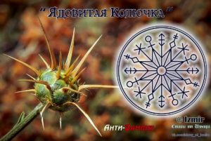 """Becoming a """"Poisonous thorn"""" Author: Izmir"""