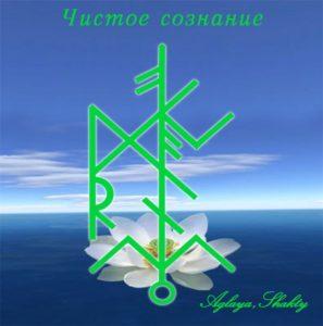 "Becoming ""Pure Consciousness"" Authors: Aglaya & Shakty"
