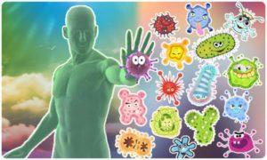 Intestines and immunity, part 1 Author: Gella
