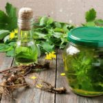 Forgotten properties of celandine in the treatment of cancer and not only.